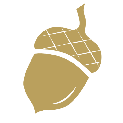 Cropped Acorn Icon Gold Acorn Studio