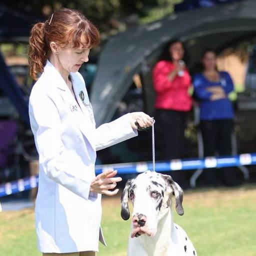 Committee South African Great Dane Association