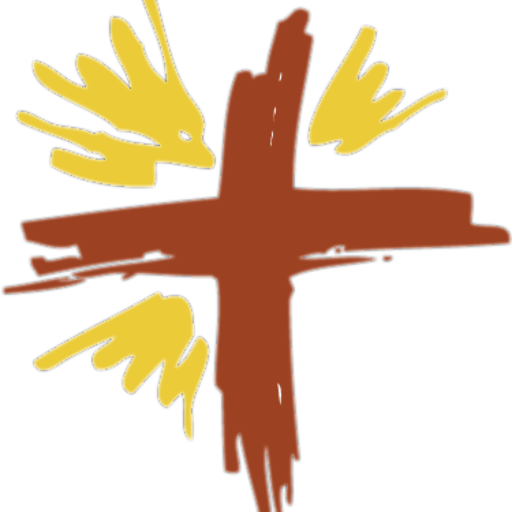 Cropped Color Cross Logo With Rdc Words