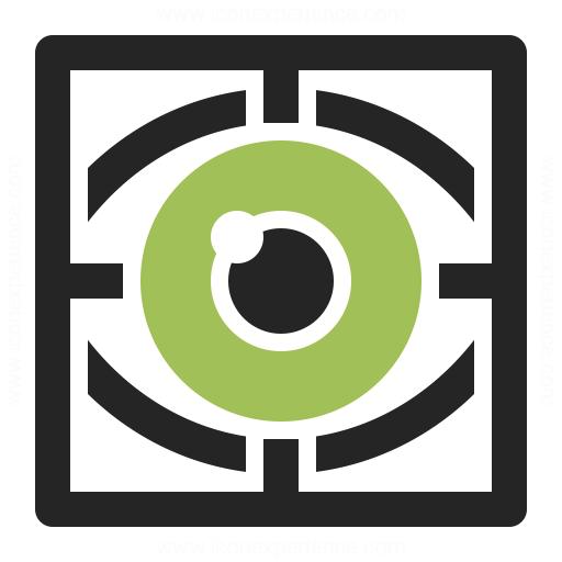 Eye Scan Icon Iconexperience