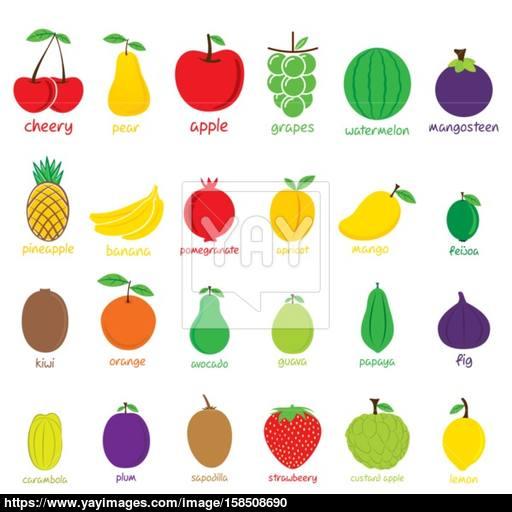 Different Fruit Icon Set Design Vector