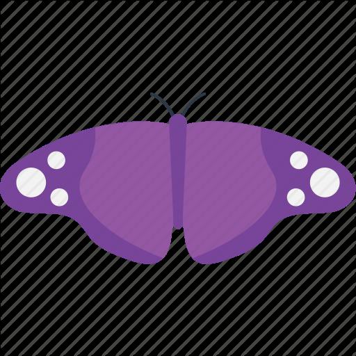 Butterfly Family, Butterfly Tattoo, Erebid Moth, Fluttering
