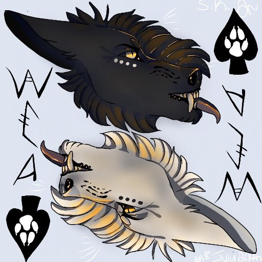 Icon Challenge Wolf Canine Amino Amino