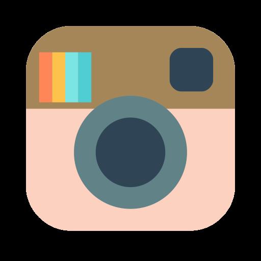 Icone De Instagram Png Png Image