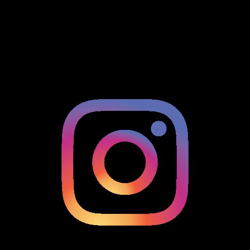 Instagram, La Couleur Gratuit De Social Signature Icons