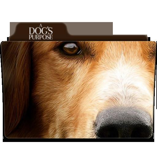 A Dog's Purpose Folder Icon