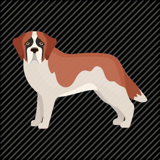 Animal, Breed, Dog, Mammal, Pet, St Bernard Icon