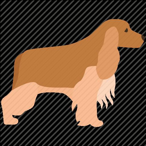 Cocker Spaniel, Dog, English, Field, Gun, Show Icon