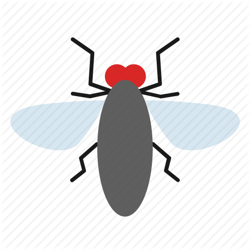 Fly, Housefly, Insect Icon
