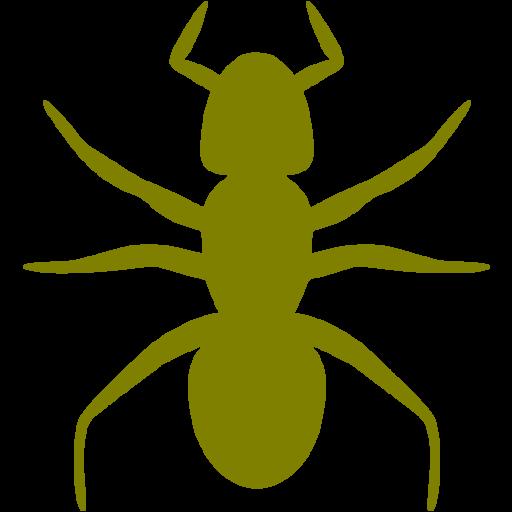 Olive Ant Icon