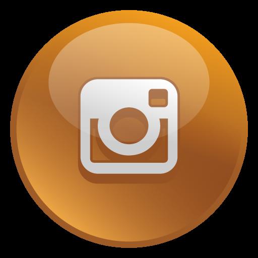 Instagram Icon Glossy Social Iconset Social Media Icons