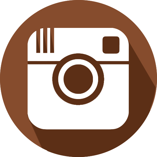 Social Network, Instagram, Logo Icon