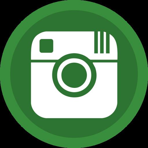 Social Media Forestgreen Icon