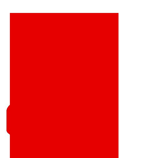 Vodafone Telecoms Management