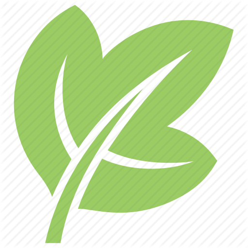 Green Leaf, Ivy Leaf, Leaf, Leaf Design, Leaf Shape Icon