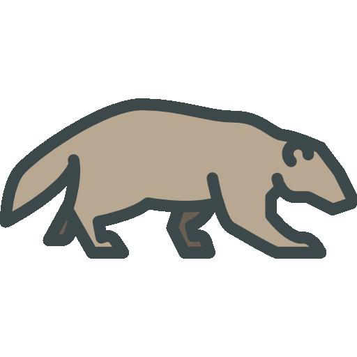 Jaguar, Wild Life, Animal Kingdom, Zoo, Mammal, Animals Icon