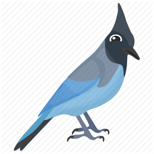 Blue Jay, Feather Creature, Fowl, Mockingbird, Pet Animal Icon