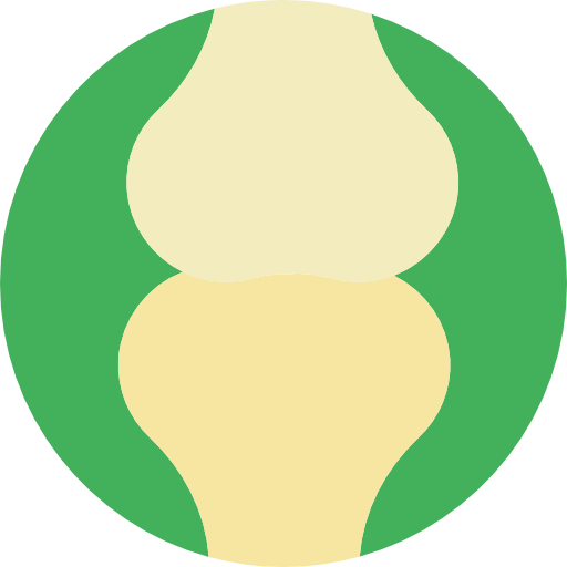 Articulation, Body Parts, Joint, Bones, Medical, Anatomy Icon