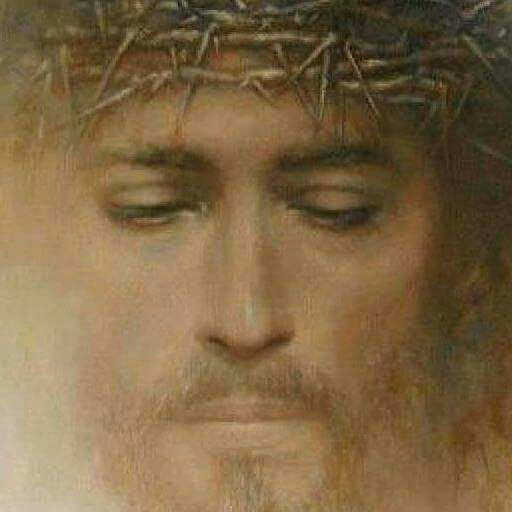 Il Santo Volto Di Art Jesus Of Nazareth Jesus Face