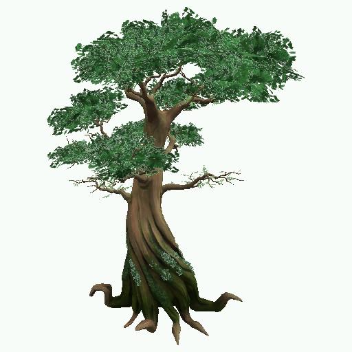 Download Free Jungle Tree Photo Icon Favicon Freepngimg