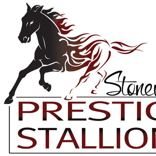 In The Name Of Derby Prestige Stallions