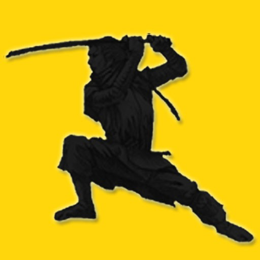 The Kick Ass Mystic Ninjas Classic Science Fiction Fantasy