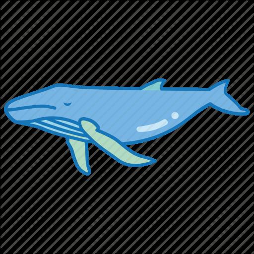 Blue, Humpback, Mammal, Sea, Southern, Spotting, Whale Icon