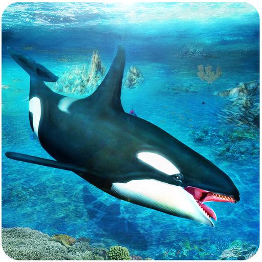 Killer Whale Simulator An Orca Simulation Game