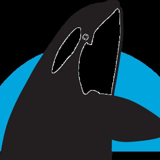 News The Whale Trail