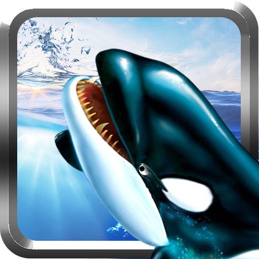 Orca Whale Simulator