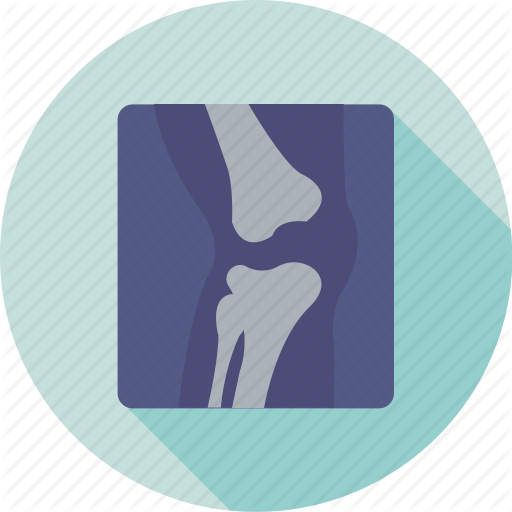 Bone Joints, Bones, Knee, Knee Joint, Skeleton Icon
