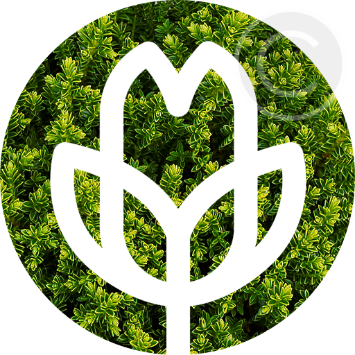Icon Gartenbau