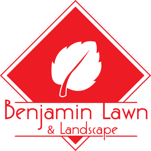 Kansas City Lawn Care And Landscaping Services Benjamin Lawn