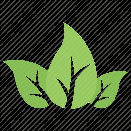 Divided Leaf, Green Leaves, Leaf Logo, Three Leaves, Tripartite