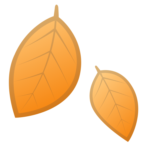 Fallen Leaf Icon Noto Emoji Animals Nature Iconset Google