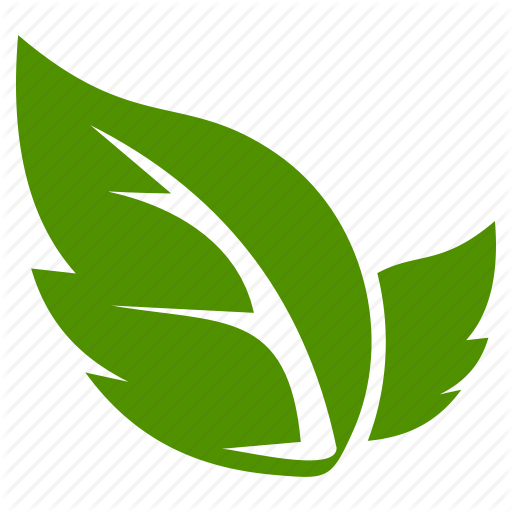 Leaf, Leave Icon Png