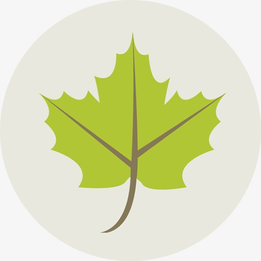 Leaf Icon, Green Icon, Green Leaves Png Image And Clipart For Free
