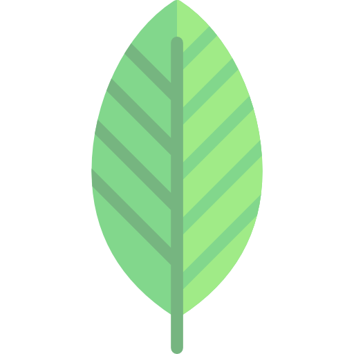 Autumn, Nature, Birch, Fall, Botanical, Leaf Icon