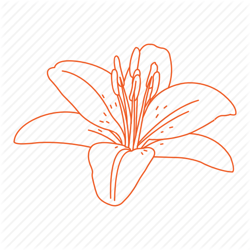 Bud, Flower, Garden, Lilly, Lily Icon