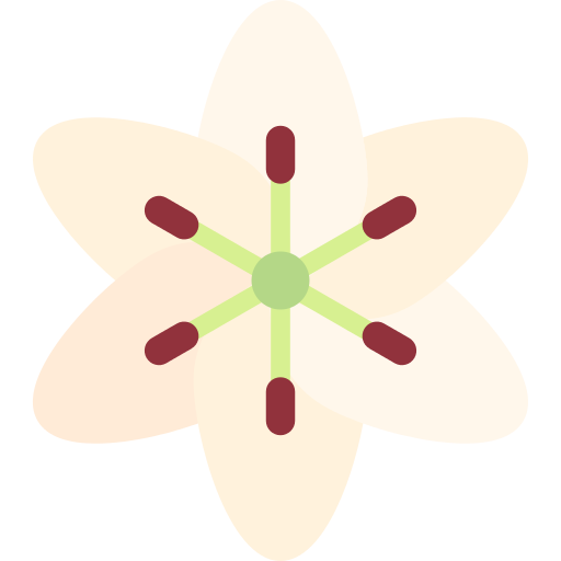 Lily Png Icon