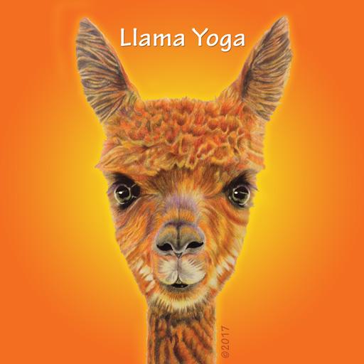 Llama Yoga The Official Website Of Llama Yoga Australia