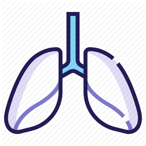 Anatomy, Cancer, Lung, Lungs, Medical, Organ, Respiratory Icon
