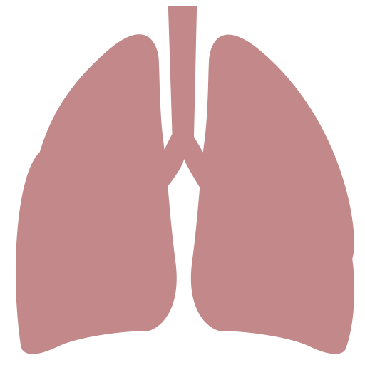 Feibu, Lungs Icon With Png And Vector Format For Free Unlimited