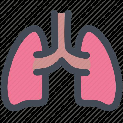 Internal Organ, Lung, Lungs, Medical, Organ, Organs, Science Icon