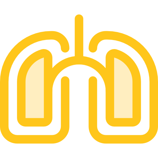 Lung, Healthcare And Medical, Medical, Organ, Lungs, Breath