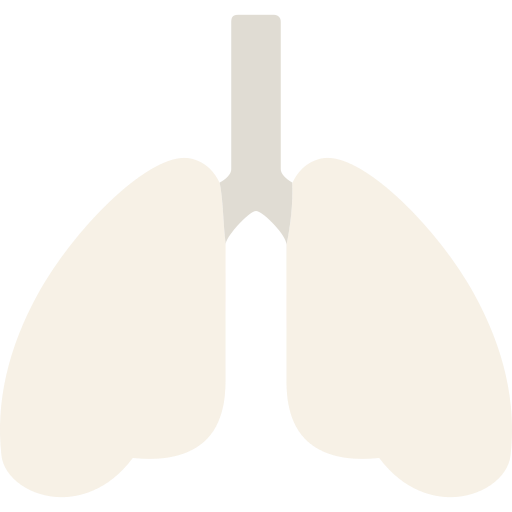 Lung Png Icon