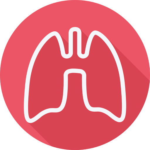 Lungs Lung Png Icon