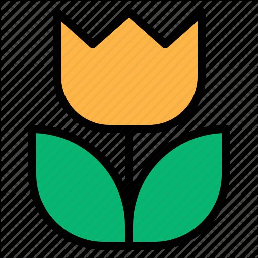 Flower, Macro, Metering Icon