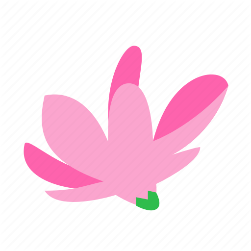 Floral, Flower, Magnolia, Nature, Nobility Icon