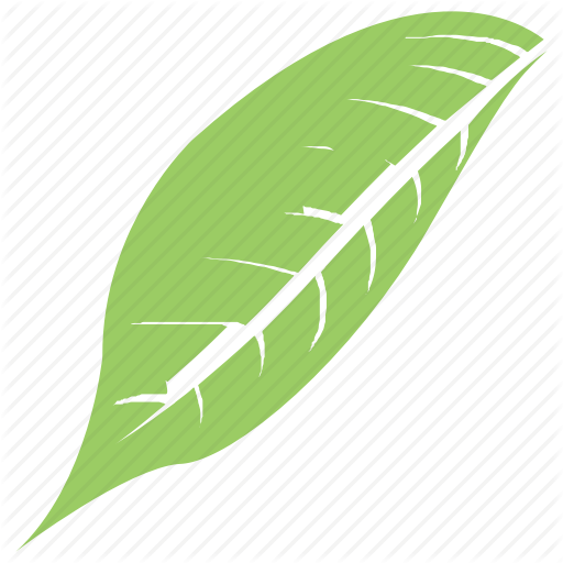 Green Leaf, Leaf, Leaf Design, Leaf Shape, Magnolia Leaf Icon
